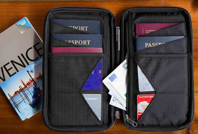 Grid Family Passport Holder