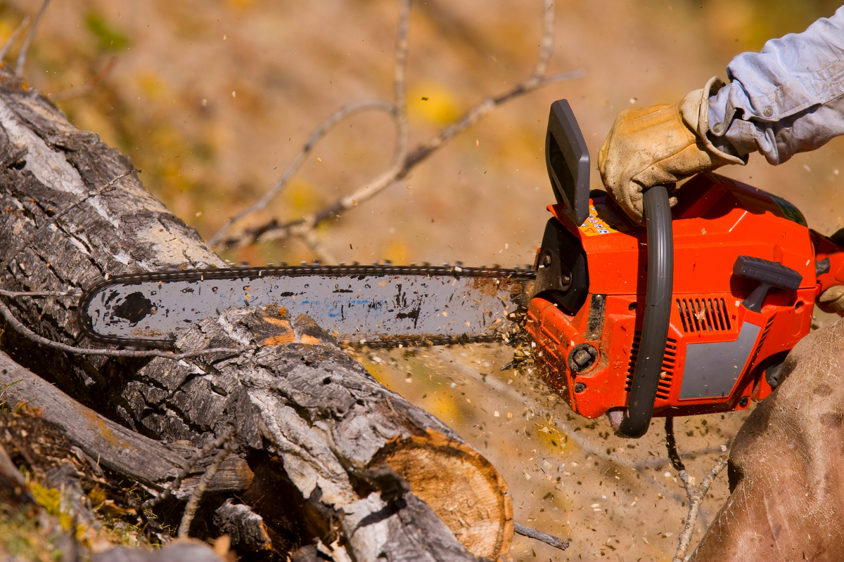 Chainsaws For Tree Trimming