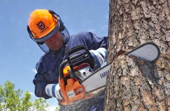 electric chainsaws for trees
