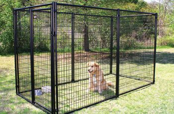 5 x 10 dog kennel