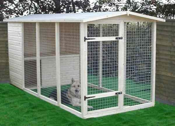 Large Dog Kennels for Cheap