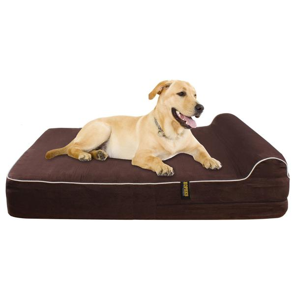 Top 10 Best Memory Foam Beds For Dogs Comparison