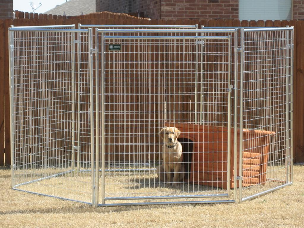 Portable Kennels for Large Dogs
