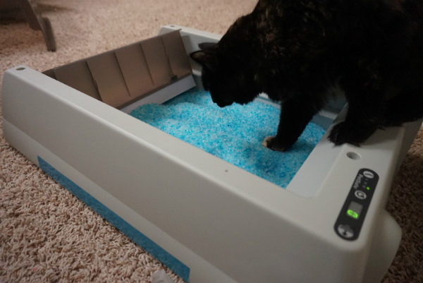 Self Scooping Cat Litter Box