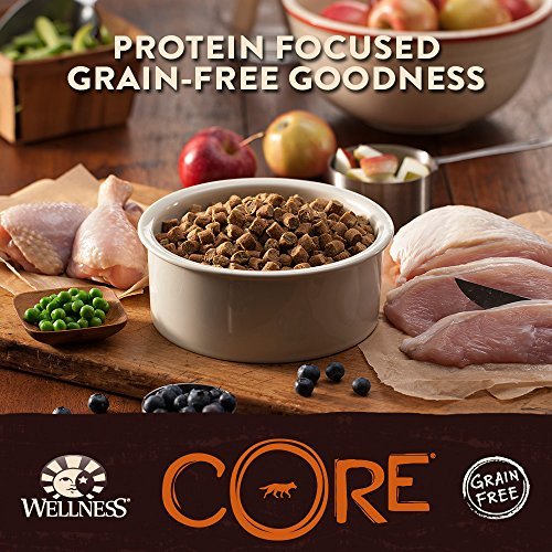 Wellness Core Canned Dog Food