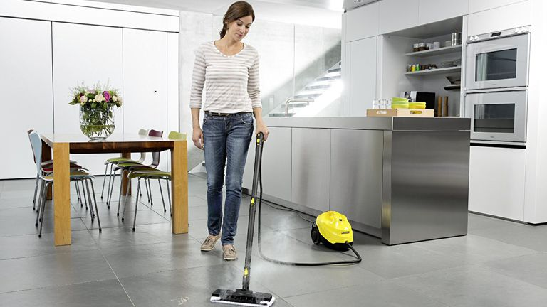 Buy Steam Cleaner