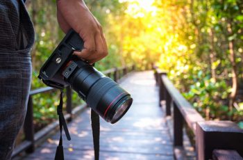 best buy photography cameras