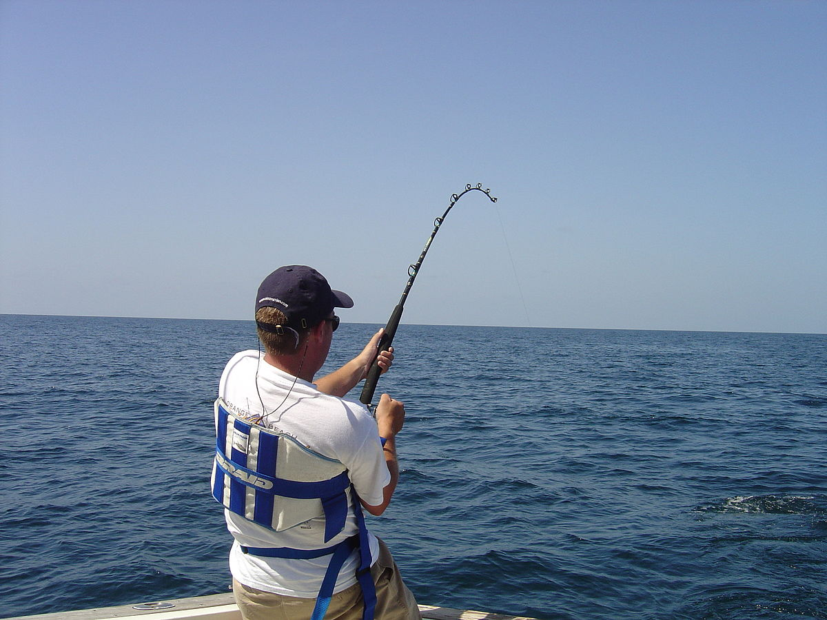 Buy Fishing Rod Online India