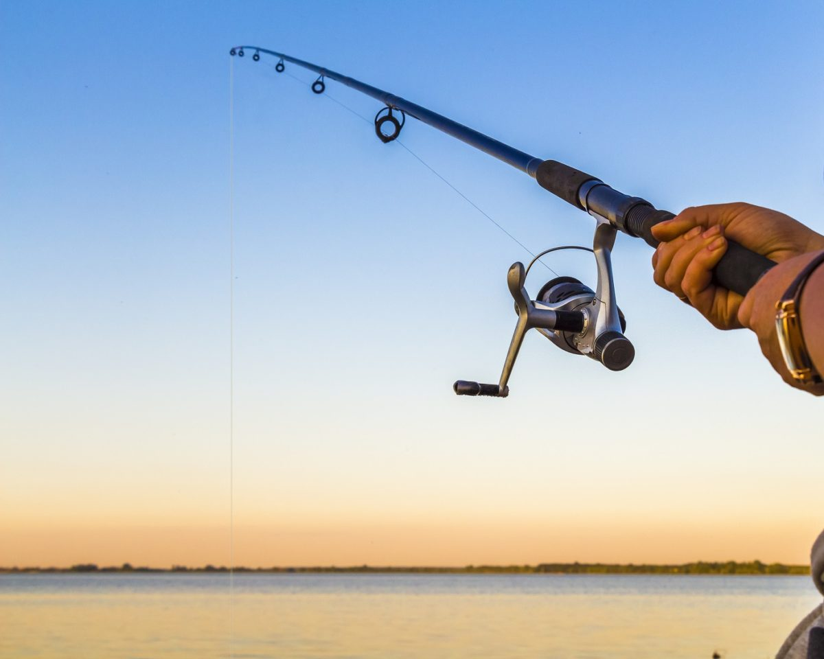 Buy Fishing Rods in Bulk