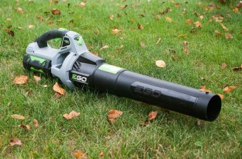 Top 10 Best Worx Cordless Leaf Blowers At Home Depot