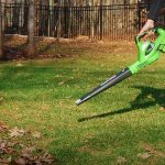 top five cordless leaf blowers