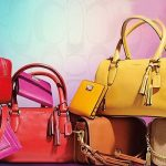 ladies purses brands